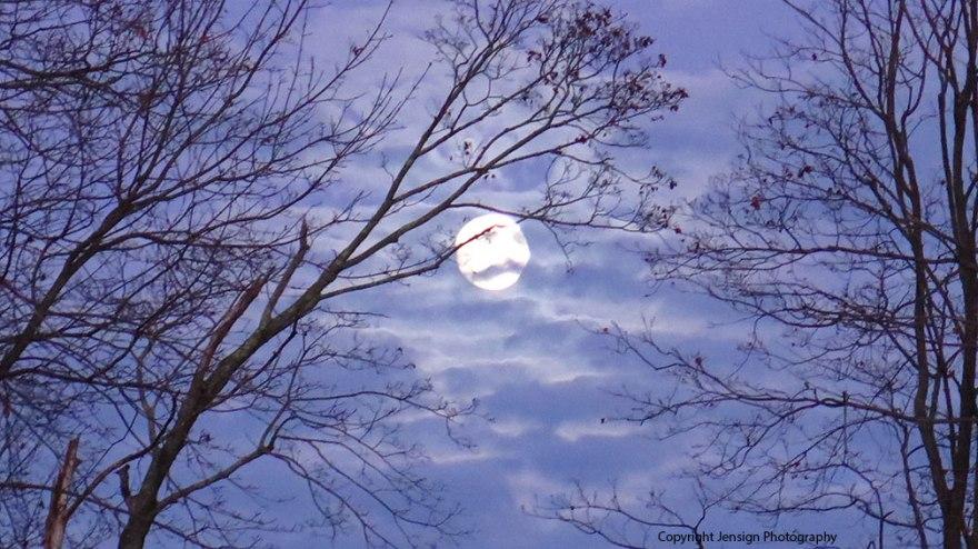 moon_img_7903