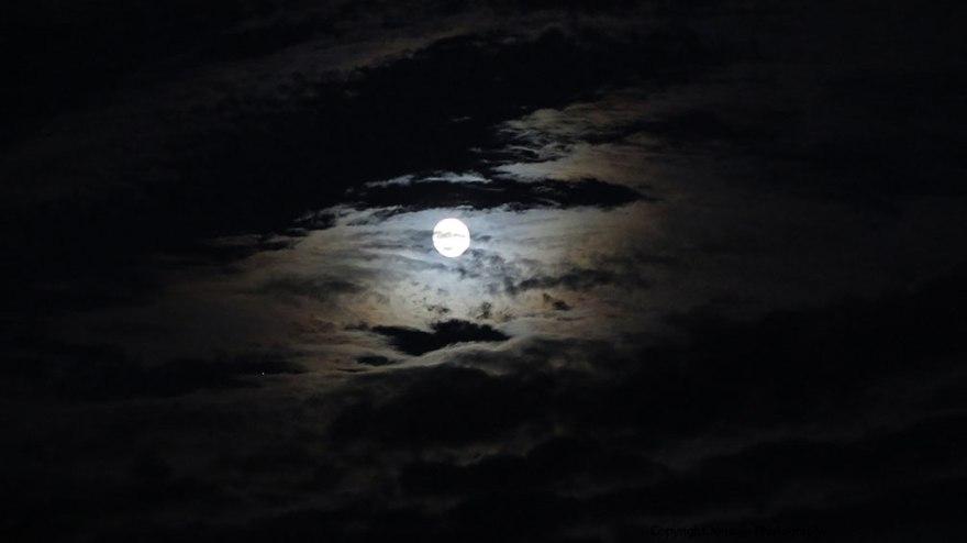 moon_img_7939