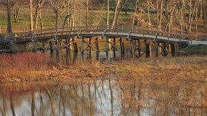 North_bridge