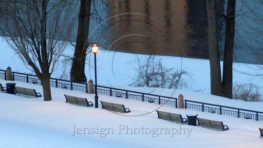 benches_river_snow-copy2