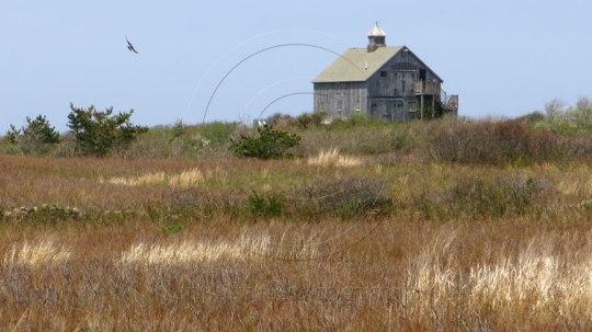 Block Island Barn