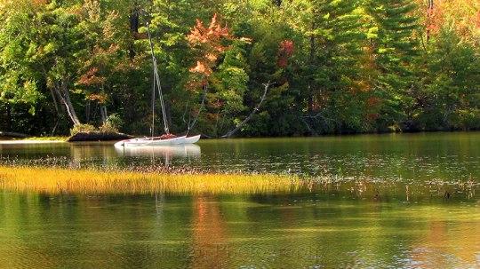 White Lake Foliage