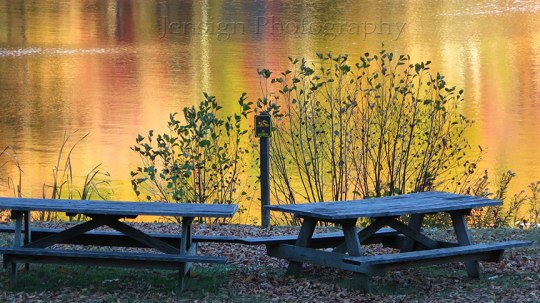 Picnic tables by lake
